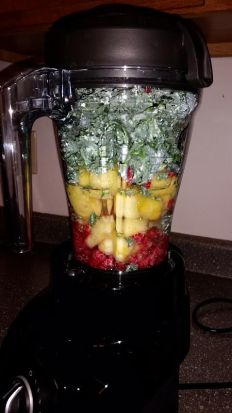 Kale, pineapple, and raspberry pre-smoothie in our Vitamix S30 blender.